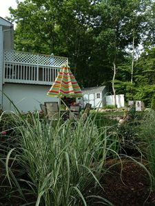 Photo for Relaxing Mystic Garden home minutes from Historic downtown Mystic