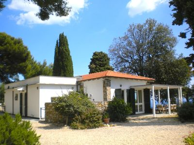 Photo for Elegant villa in the heart of an olive grove pine cypress trees overlooking the sea