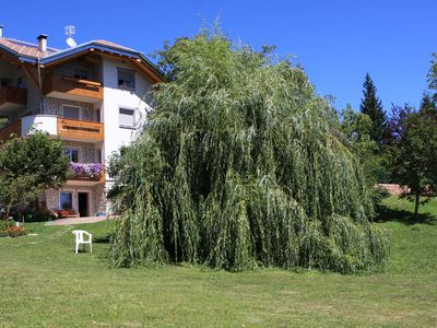 Photo for Fai della Paganella Trentino Alto Adige - ground floor apartment with garden