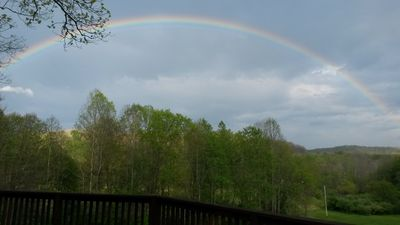 Rainbow (Photo doesn't give justice to the brilliance of these colors)