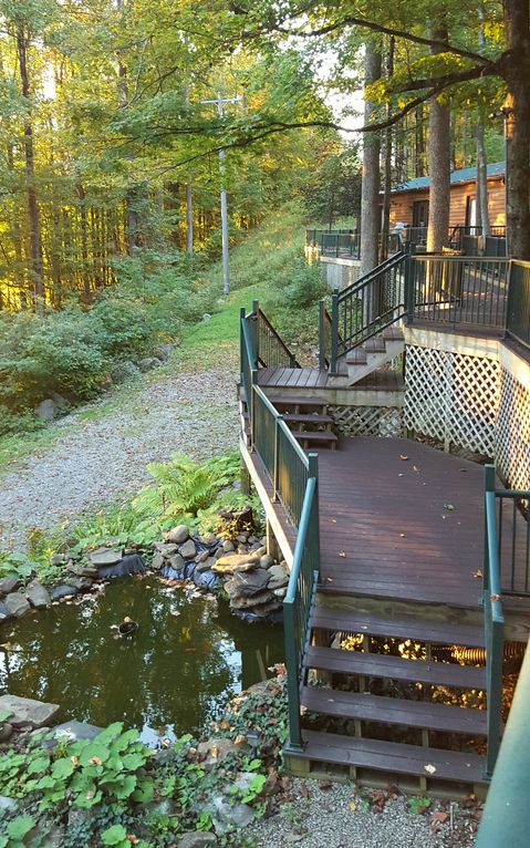 Small Lower Deck With A Fish Pond.
