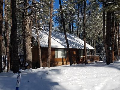 Renovated Cozy Cabin in Pine - February special of $139/night - No Pet Deposit