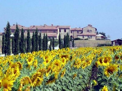 Photo for Typical former farmhouse of Tuscany, apartment T6-bs