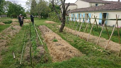 Photo for Small house / Gite in an old farmhouse in Permaculture