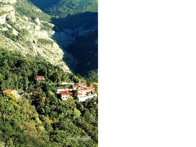 Photo for relax, Val Rosandra, walks, animals welcome, and children.