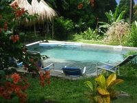 Spacious with a beautiful view of the jungle and sea