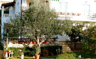 Photo for In the heart of a quiet Mediterranean garden, spacious and modern apartment