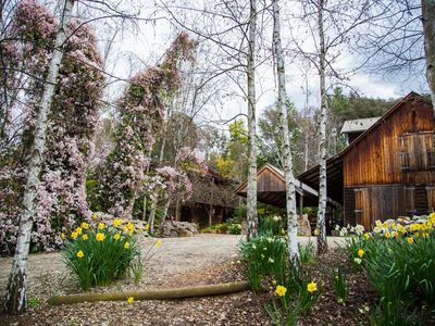Photo for Lothlorien A Romantic Luxury  Retreat in the heart of the high country