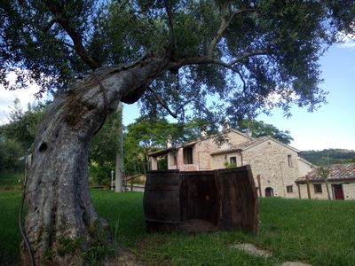 Photo for Country house nestled in the spectacular Umbrian hills (Appartament Passiflora self catering )
