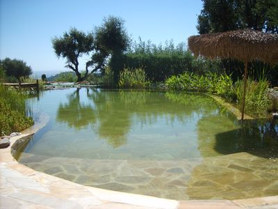 Photo for Large independent studio in beautiful provencal villa with terraces