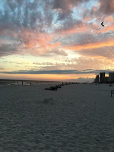 Photo for Enjoy your vacation at Grand Caribbean in beautiful Perdido Key!