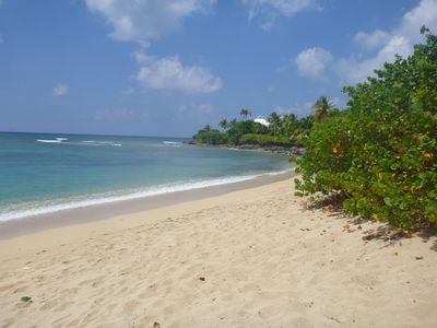 Photo for Palm Villa - paradise with spectacular ocean views, golf course, and Wi Fi