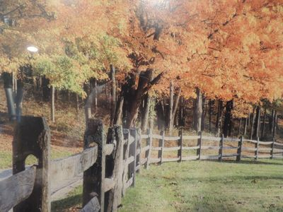 Photo for Winterwood Country Estate - 26 Scenic Acres
