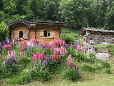 Photo for Charming chalet, Village of Bionnassay - Countries of Mt BLANC- 1300 m altitude