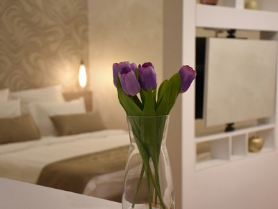 Cozy, clean, charming, new apartment in the city center of Belgrade