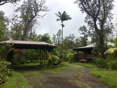 Photo for Peaceful & Secluded Solar Powered Rainforest Cottage