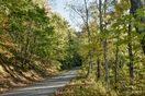 Ascent into a wooded, private setting; bottom of drive 5 minutes from downtown.