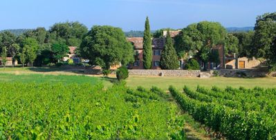 Photo for 8 bd, chateau with wine cellar in Provence, pool