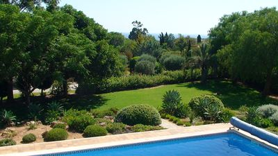 Look in the garden with pool