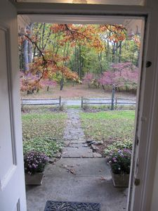 View from Front Door - Fall