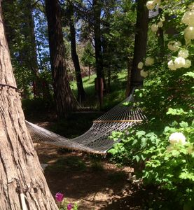 Need some R&R on our 1/2 acre  property--very private.