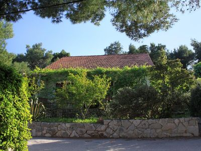 Photo for Apartment in Mudri Dolac (Hvar), capacity 2+2
