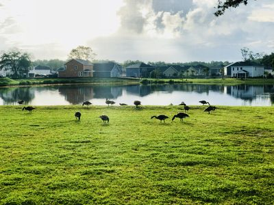 Photo for 6BR House Vacation Rental in Johns Island, South Carolina