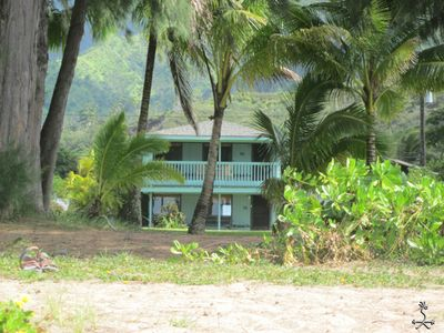 Keone, The Downstairs Beach House, just lawn & trees between you and Hanalei Bay