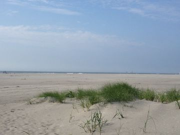 Beach, Brigatine, NJ, USA