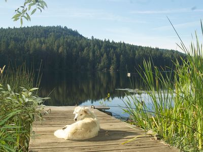 Photo for Lake House Saltspring Island