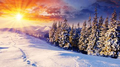Photo for Finest Skiing Vacation Spot In The U.S