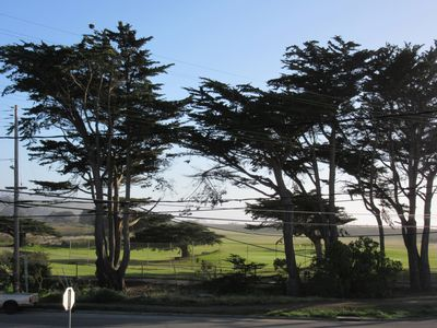 Photo for PET FRIENDLY,  views of Golf Course and 1 Block from Beach and Pacifica Pier