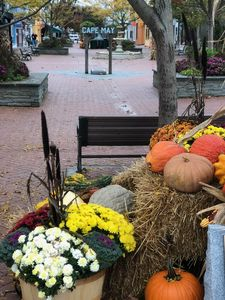Photo for It's not too early to book your Cape May Fall Getaway!