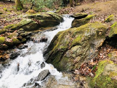Photo for 10 acres with pristine stream and small waterfall. Pets okay.  20% OFF with 1 Wk Stay!