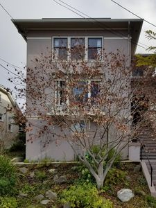 Photo for Classic Upper Rockridge Home With Hot Tub, Garden and Lots of Fine Art