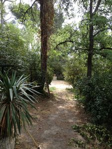 Photo for Apartment in a wooded area 5 minutes from downtown. Renovated.