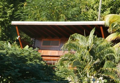 The Treehouse II is tucked into the treeline giving you the bird's eye view .