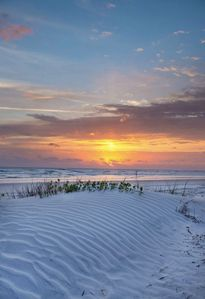 Photo for BEAUTIFUL renovated ocean front 1 bed condo on NO DRIVE New Smyrna beach WIFI