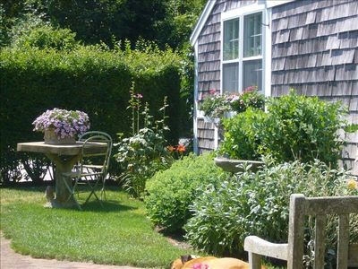 Photo for Charming Nantucket Seaside Cottage