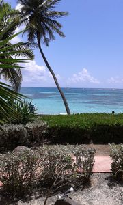 Photo for ESMERALD SAINTE ANNE luxury apartment, direct access to the sea