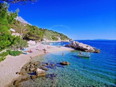 Photo for Brand new listing 2019 Beach oasis in untouched nature minute to Adriatic sea