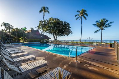 Large oceanfront freshwater swimming pool