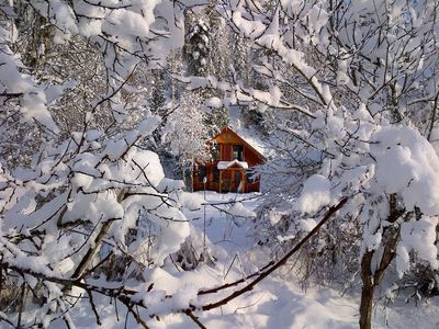 The Powder Chalet through the trees after a fresh snowfall.