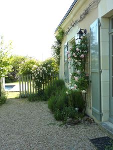 Photo for CHARMING HOUSES IN THE HEART OF LOIRE VALLEY WINEYARD AND LOIRE VALLEY CASTLES