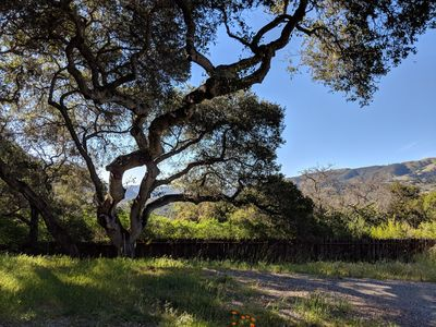 Photo for 2BR House Vacation Rental in Carmel Valley, California