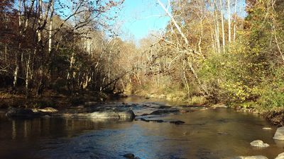 Photo for Woods & Water to Explore just 20 mins to Liberty Univ - 10 to Downtown Lynchburg
