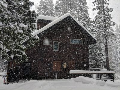 Photo for Hidden Serenity Lodge - Private setting, 10 min walk to Lake Tahoe