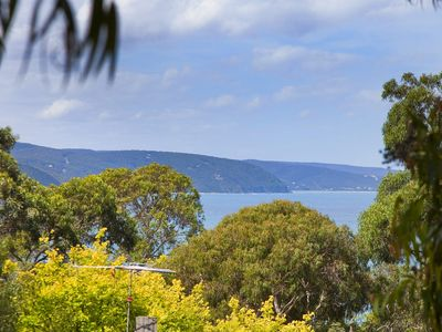 Photo for CHARLESTON - Nestled into the golden circle of Lorne