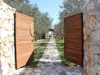 Beautiful cottage within olive grove
