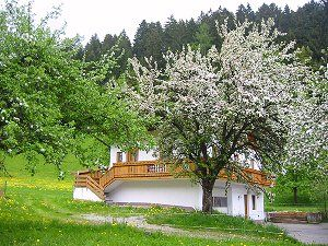 Photo for The summer and winter residence is very close to the wood in a very idyllic area